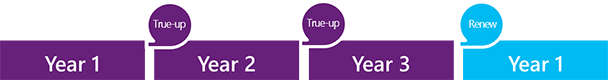 Pcm newsletter for microsoft true up during the term of the enterprise agreement you can add and adjust users devices products and services at any time without having to place platinumwayz