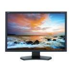 "P Series - LED monitor - 24"" - touchscreen - 1920 x 1200 - AH-IPS - 350 cd/m² - 1000:1 - 8 ms - HDMI, DVI-D, VGA, DisplayPort, USB - black"