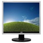 "Professional E719SD - LED monitor - 17"" (17"" viewable) - 1280 x 1024 - 250 cd/m² - 1000:1 - 5 ms - DVI-D, VGA - black, silver"