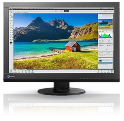 EizoColorEdge CS240-CN - LED monitor - 24.1