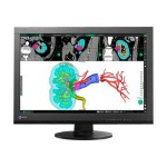 "RadiForce MX242W - LED monitor - 24.1"" (24.1"" viewable) - 1920 x 1200 - IPS - 350 cd/m² - 1000:1 - 12 ms - DVI-I, DisplayPort - black"