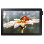 "DB-E Series 10.1"" Edge-Lit LED Display for Business"