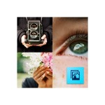 Adobe Photoshop Elements - ( v. 13 ) - media - TLP - 0 points - ESD - Win, Mac - All Languages 65265703AD00A00