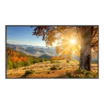 "MultiSync X754HB - 75"" Class - X Series LED display - 1080p (Full HD) 1920 x 1080 - direct-lit LED"