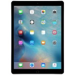 iPad Pro Wi-Fi 128GB - Space Gray (Open Box Product, Limited Availability, No Back Orders)