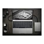 Porsche Design Mobile Drive STFD1000402 - Hard drive - 1 TB - external ( portable ) - USB 3.1 Gen1 - silver