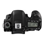 Canon EOS 80D - Digital camera - SLR - 24.2 MP - 1080p / 60 fps - body only - Wi-Fi, NFC 1263C004
