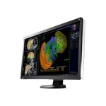 "RadiForce RX650 Single Head - LED monitor - 6MP - color - 30"" - 3280 x 2048 - IPS - 800 cd/m² - 1000:1 - 30 ms - 2xDVI-D, 2xDisplayPort - black - with AMD FirePro W5100 graphics adapter"