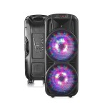 "Double 12"" Two-Way Bluetooth LED Loudspeaker"