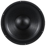 12'' RAW SUBWOOFER