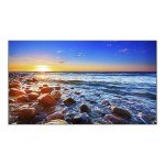 "MultiSync UN551S - 55"" Class LED display - digital signage - 1080p (Full HD) - direct-lit LED"