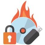 Roxio Secure Burn Enterprise - (v. 4) - license - 1 user - volume, GOV - 51-250 licenses - Win - Multi-Lingual