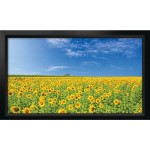 "Stratus Series 16:9 Fixed-Frame Screen (100"", Pearl White)"