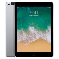 Apple iPad Wi-Fi + Cellular 32GB with Engraving - Space Gray MP242LL/A