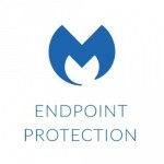 Endpoint Protection - Subscription license (1 year) - volume, Business - 250-499 licenses - Win