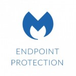 Endpoint Protection Business - Subscription license (1 year) - volume - 100-249 licenses - Win