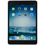 Verizon iPad mini with Retina display - 32GB Wi-Fi + Cellular (Space Gray) (Open Box Product, Limited Availability, No Back Orders)
