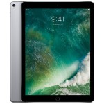 12.9-inch iPad Pro Wi-Fi 64GB - Space Gray (Open Box Product, Limited Availability, No Back Orders)
