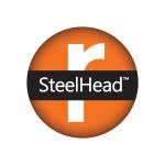 Steelhead 1555V Virtual Appliance Support