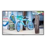 "MultiSync C431 - 43"" Class C Series LED display - digital signage / interactive communication - 1080p (Full HD) 1920 x 1080 - edge-lit"