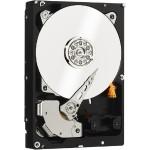 1TB SATA 6GB/s 7200rpm RE Datacenter Internal Hard Drive - Refurbished