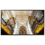 65-inch Commercial 4K UHD LED LCD Display