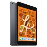 iPad mini Wi-Fi 256GB - Space Gray