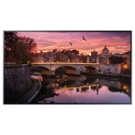 55-Inch Commercial 4K UHD LED LCD Display (No Wi-Fi) - Manufactured in a TAA country