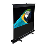 "100"" ezCinema Projector Screen"