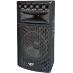 Pyle 1000 Heavy Duty 2 Way Pa Loud-speaker Cabinet PADH1569