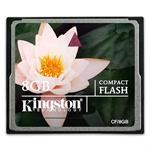 8GB CompactFlash (CF) Card