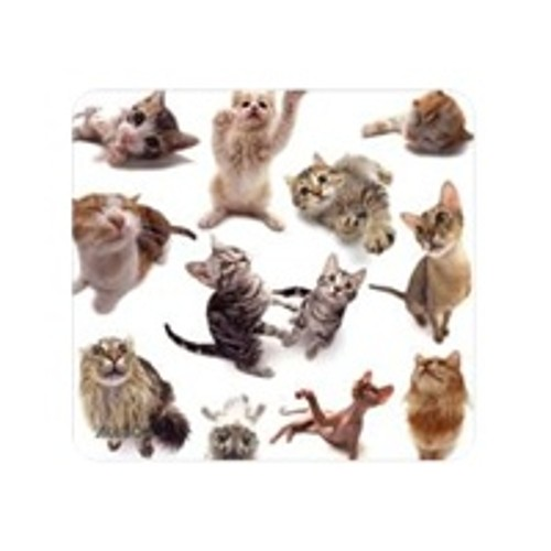 Allsop Cat Group Mouse Pad - mouse pad