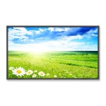 "46"" High-Bright Professional-Grade Large-Screen Display"