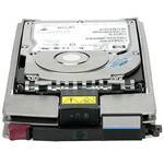 StorageWorks EVA M6412A 300GB 15K Fibre Channel Hard Disk Drive