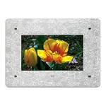 Decorative frame - frosted floral glass - for EASYSHARE SV-710