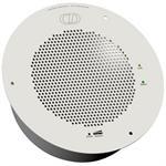 V2 Analog Speaker
