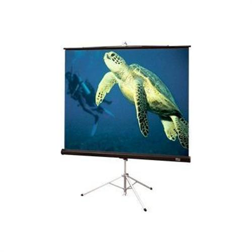 Draper, INC. Diplomat 4:3 NTSC/PAL Video Format - projection screen - 120 in ( 305 cm )