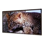 Access/Series E HDTV Format - Projection screen - motorized - 110 V - 110 in ( 279 cm ) - 16:9 - Matt White