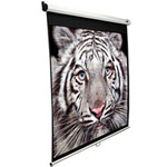 Projection Screen - Aluminum - Black