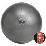 75cm Professional Stability Ball - Drak Gray