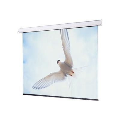 Targa AV Format - projection screen (motorized) - 120 in ( 305 cm )
