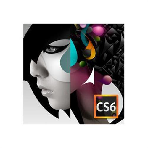 Adobe Creative Suite 6 Design Standard - version / product upgrade license
