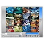 32 Channel NVR Software License (Third Party IP)