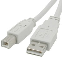 Cables To Go USB 2.0 Device A/B Cable 10 Feet 13400