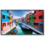 "46"" High-Performance LED-Backlit Commercial-Grade Display w/ AV Inputs & Integrated Digital Tuner"