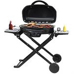 Outdoor LP Gas Barbecue Grill