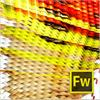 Adobe Fireworks CS6 Win 65208571-ESD