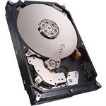 Seagate Technology NAS HDD ST2000VN000 - hard drive - 2 TB - SATA 6Gb/s ST2000VN000