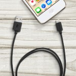 Tablet Management Lightning to USB Cable Kit - Lightning cable - Lightning (M) to USB (M) - 2 ft - black (pack of 16) - for Apple iPad/iPhone/iPod (Lightning)