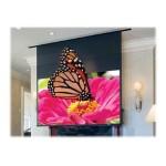 Signature/Series E 16:9 HDTV Format - Projection screen - in-ceiling mountable - motorized - 110 V - 100 in (100 in) - 16:9 - Matt White XT1000E - white